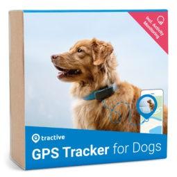 Tractive GPS Dog lemmikkipaikannin
