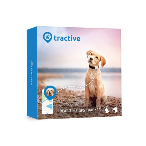 Tractive gps device dog tracking in box